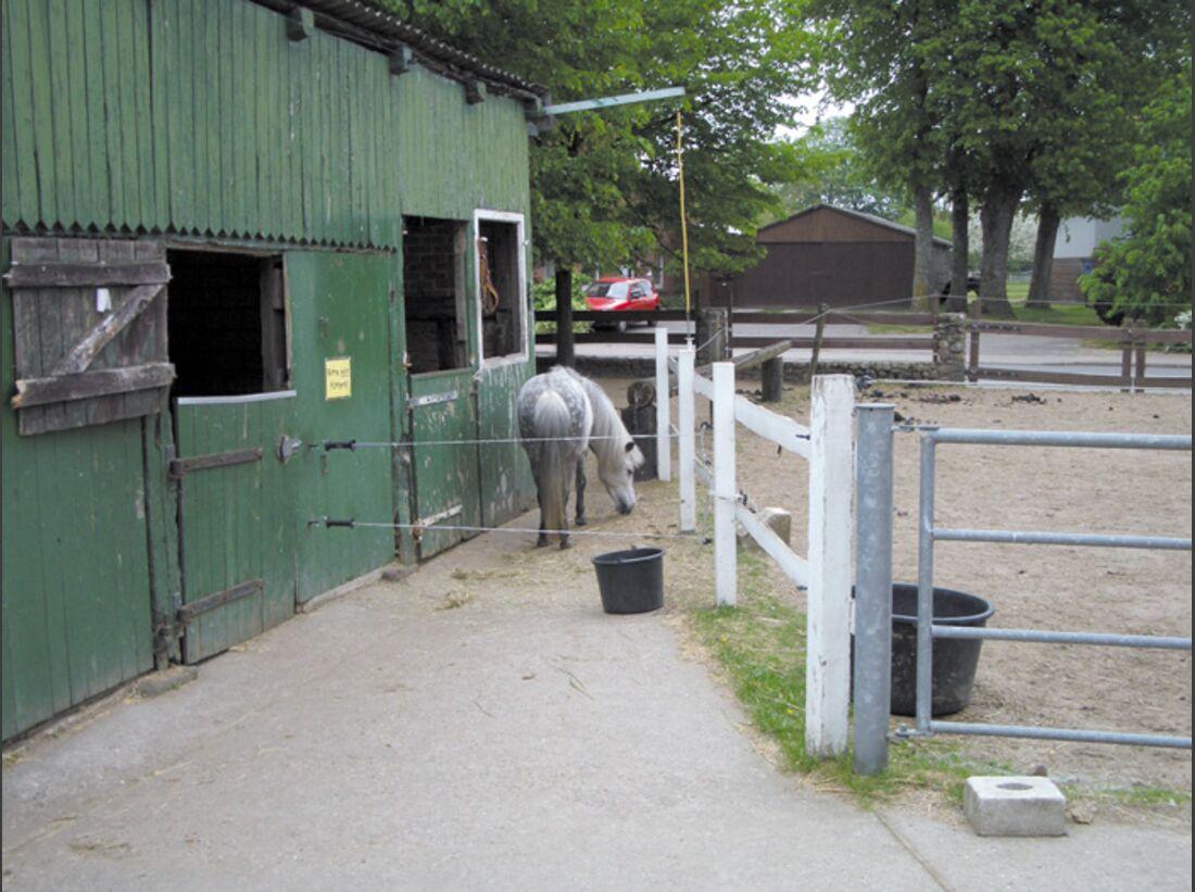 CA Reitschultest 0706 Ponyfarm5 (jpg)
