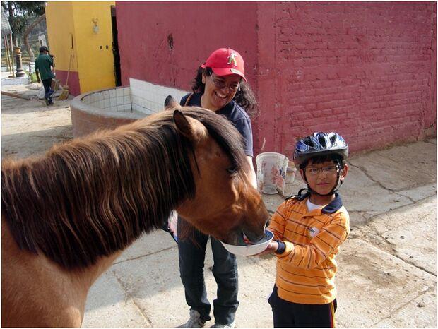 CAV 0111 Peru_18 (jpg)