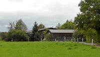 CAV-0114-Reitschultest-Hoelzleshof-4 (jpg)
