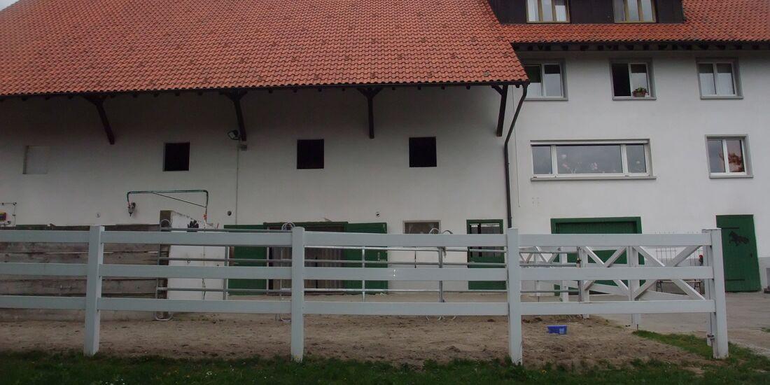CAV_0811_Reitschultest_Fjallaborg_1 (jpg)