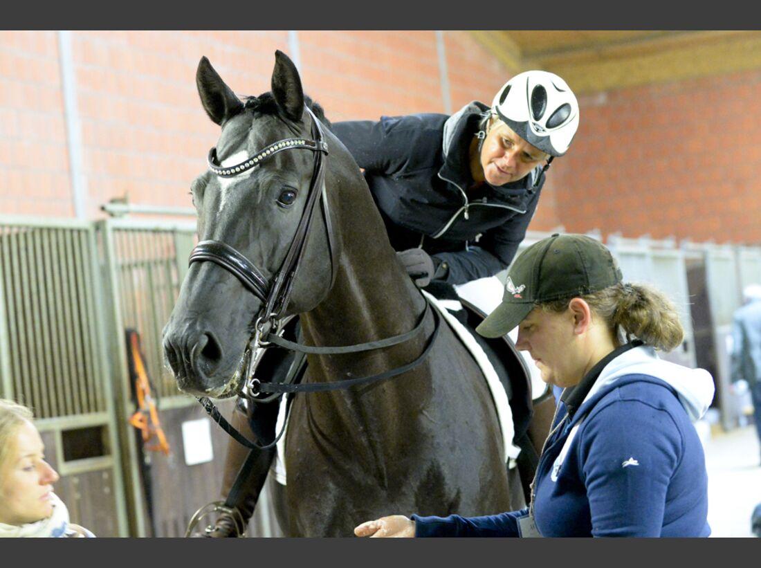 CAV-Cavallo-Academy-2014-29 (jpg)
