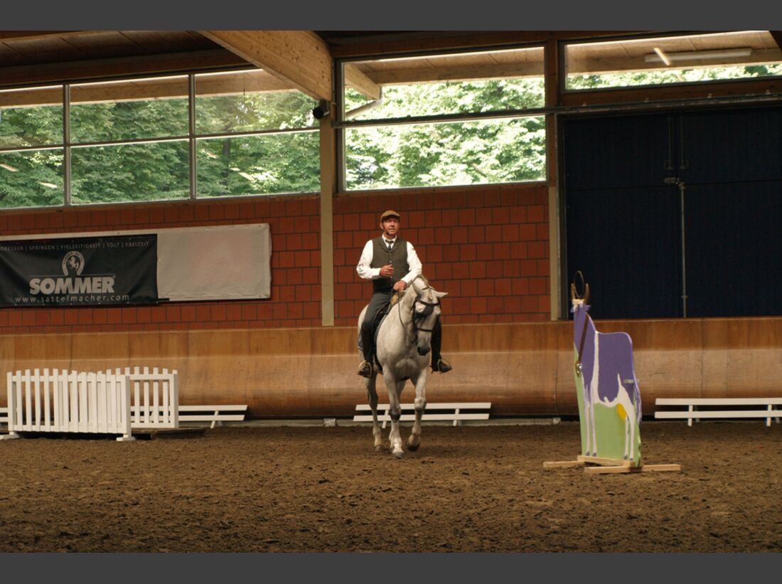 CAV-Cavallo-Academy-2014-6 (jpg)