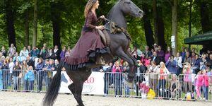 CAV Cavallo Academy 2014 Show Kenzie Dysli
