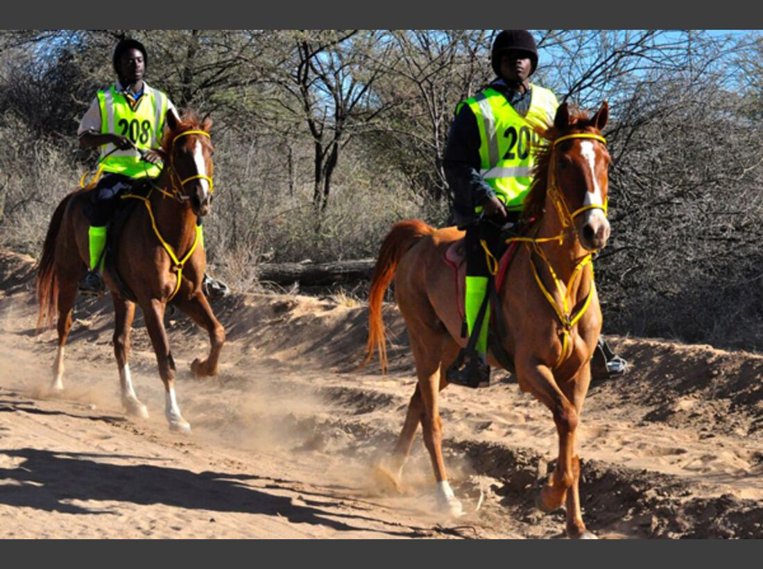 CAV-Distanzreiten-Namibia-04