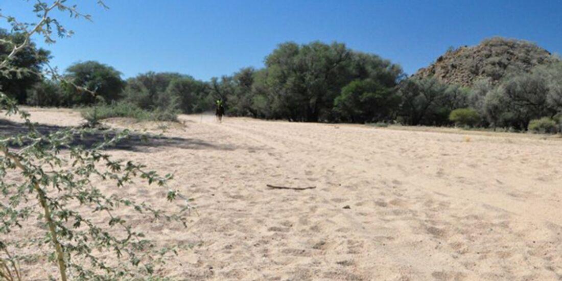 CAV-Distanzreiten-Namibia-27