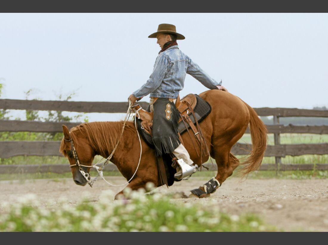 CAV Ernst-Peter Frey Sugarman Horsemanship 05