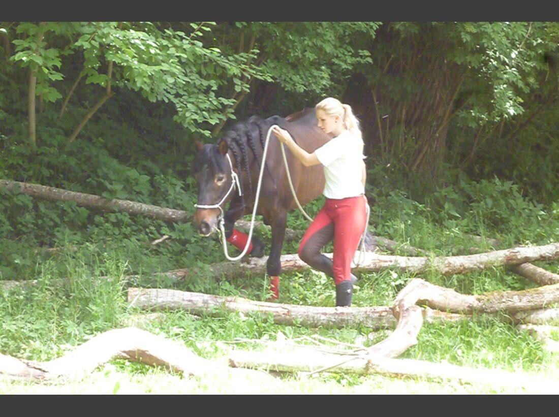 CAV-Extreme-Trail-Park-Schechen-2014-7 (JPG)