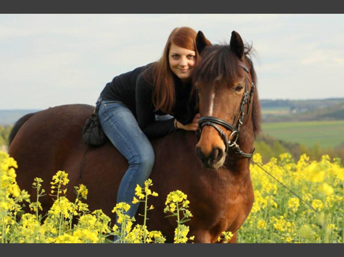 CAV Fan-Pferde 2013 Leserfotos Joy