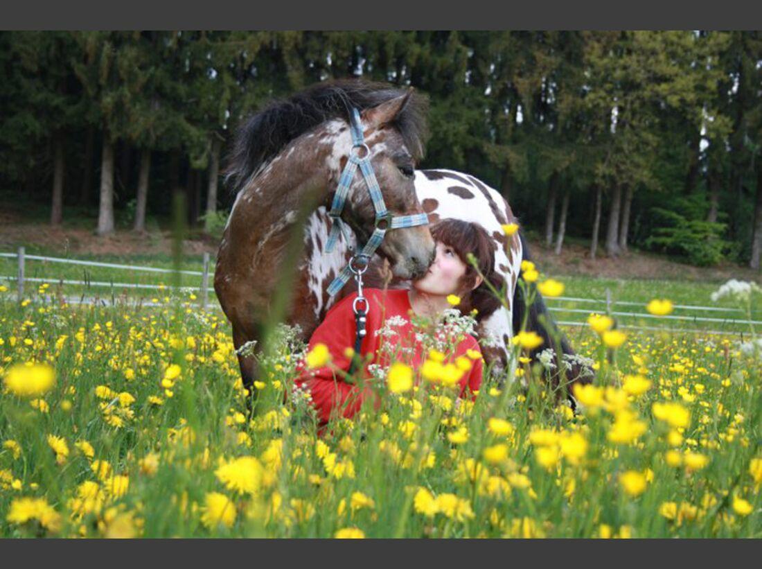 CAV-Fan-Pferde-Leseraktion-2013-Spike (jpeg)