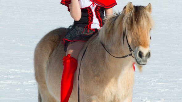 CAV Fasching Karneval Norweger