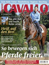 CAV Februar 2013 Cover Titel