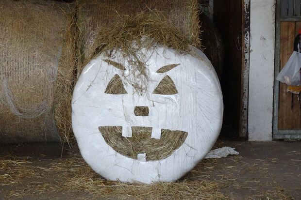 CAV-Halloween-Leserfotos-Peggy-Gemeinert