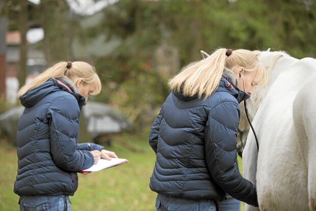 CAV Heilpraktiker Weerd Zwillinge