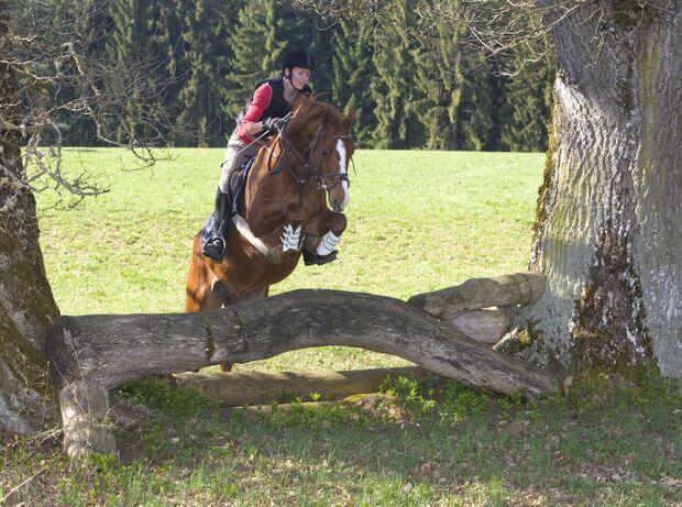 CAV Jagdreiten Marbach