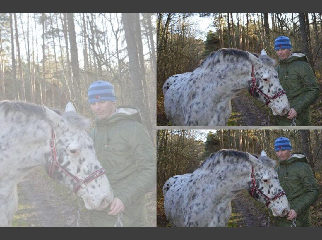 CAV Maenner lieben Pferde Sarah Wogatzki