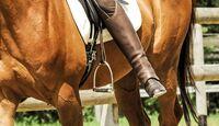 CAV Optimales Training ohne Bügel