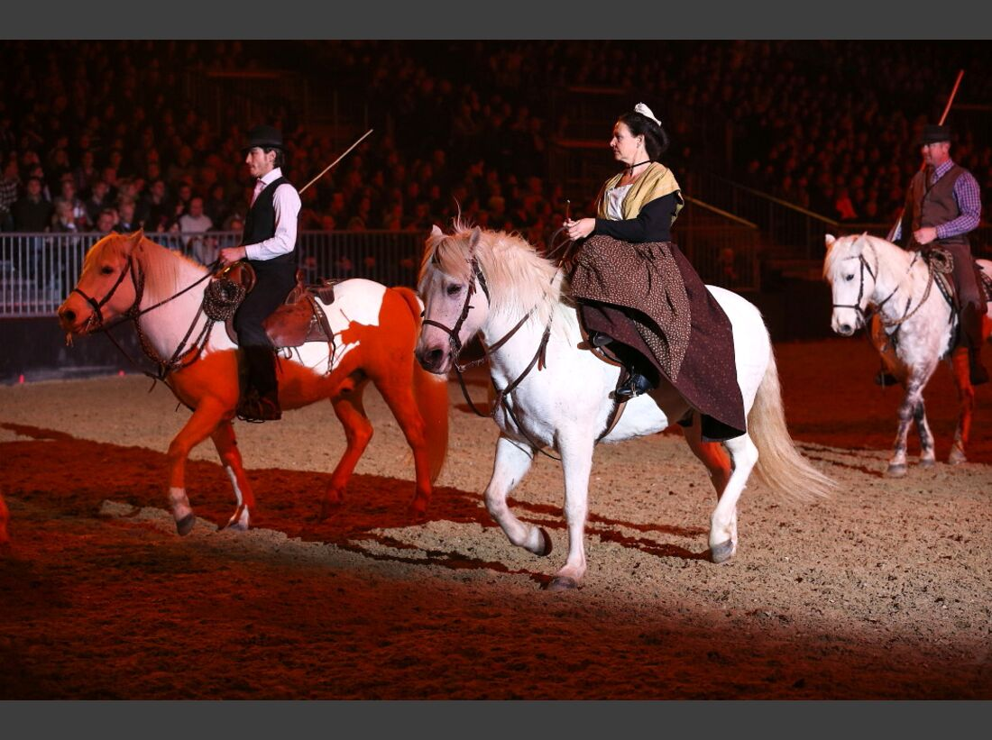 CAV Pferd und Jagd 20