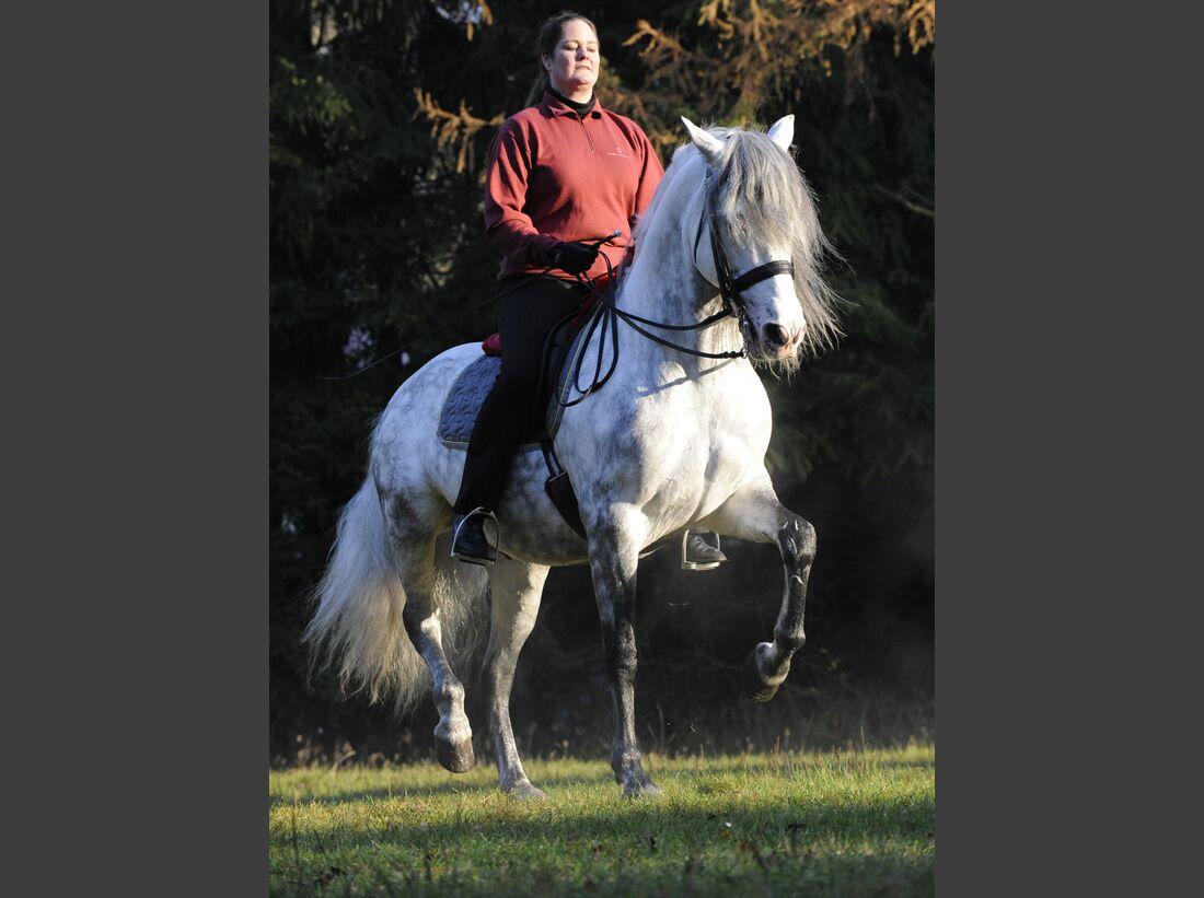CAV-Pferd-und-Jagd-2014-Andrea-Schmitz (jpg)