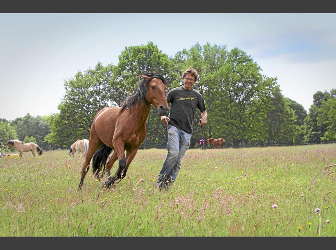 CAV-Pferd-und-Jagd-2014-Uwe-Weinzierl (jpg)