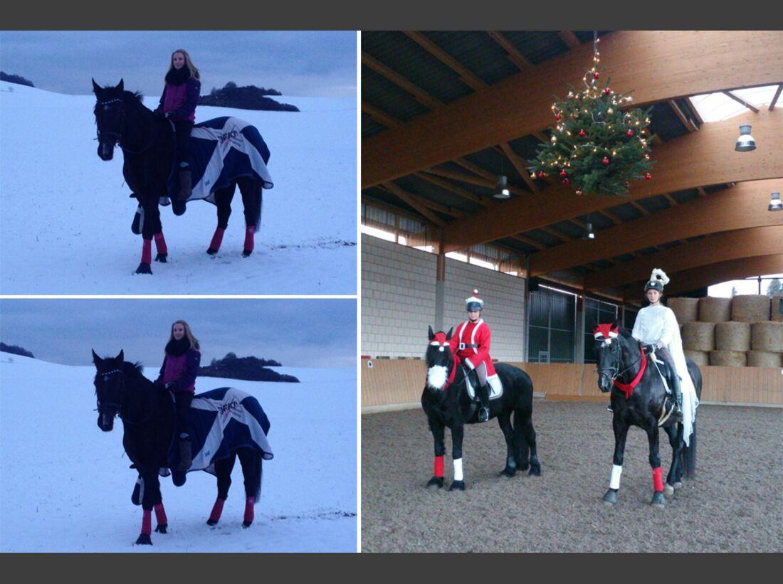 CAV Pferde Schnee Winter 2015 Gina Steinfeld