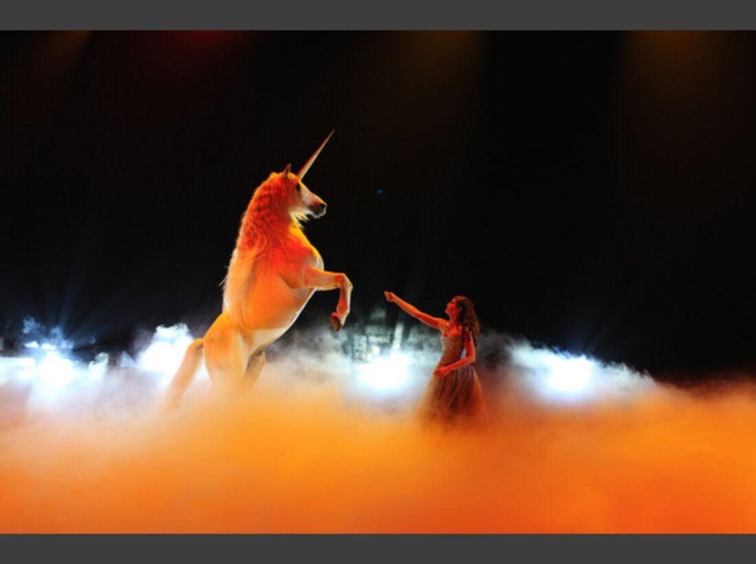CAV Pferde-Show André Heller Magnifico 17