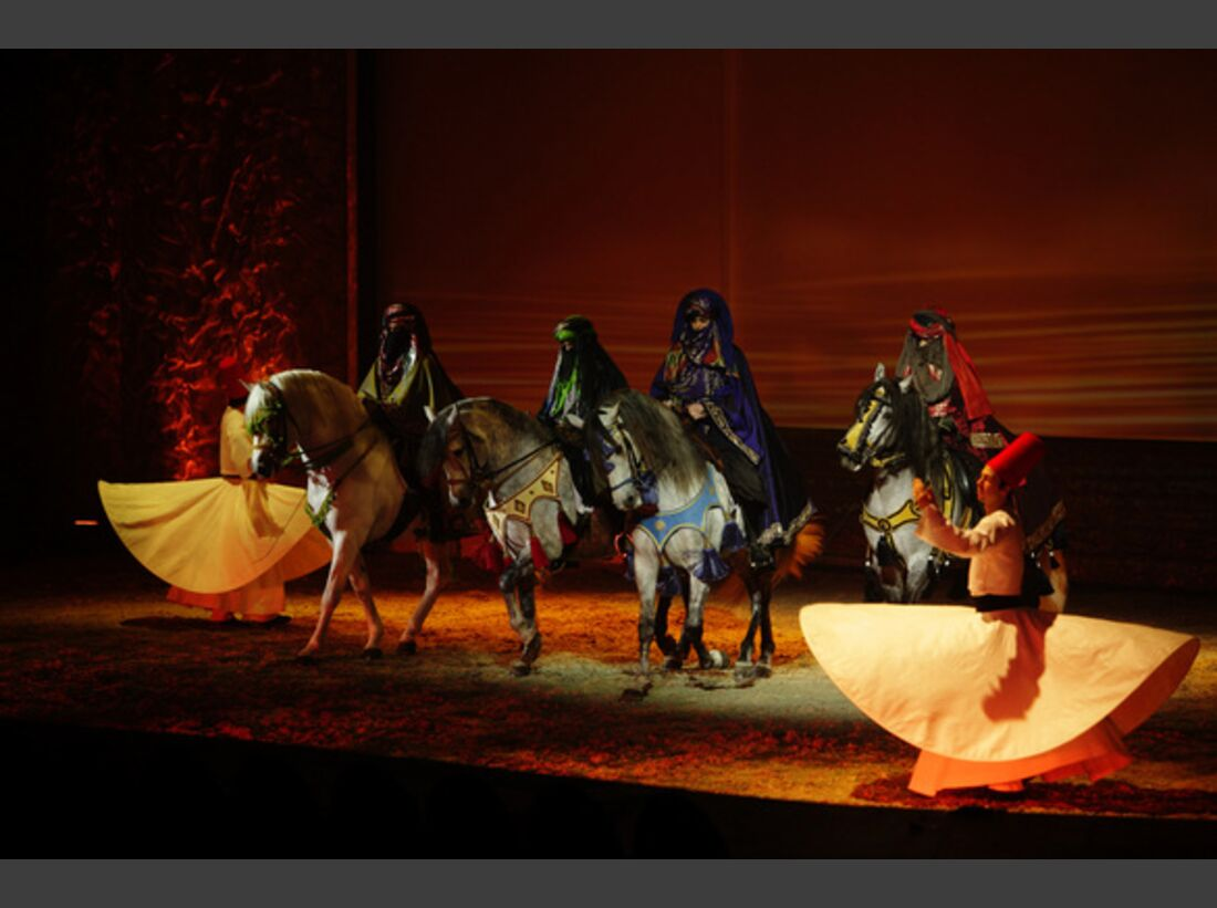 CAV Pferde-Show André Heller Magnifico 24