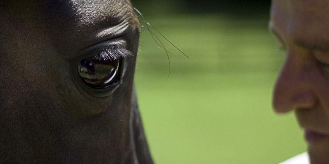 CAV Pferdeaugen Morgan Wallach USA MS