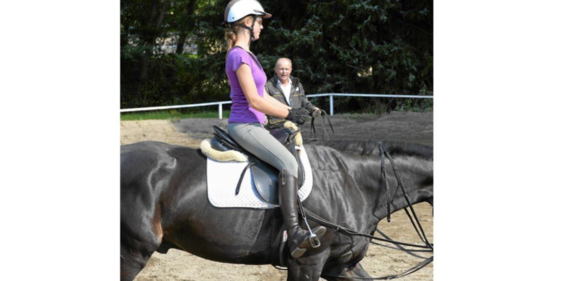 CAV Pferdekenner Burkhard Jung Dressur 5