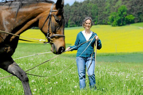CAV Pferdekenner Knut Krüger Training Verhalten 4