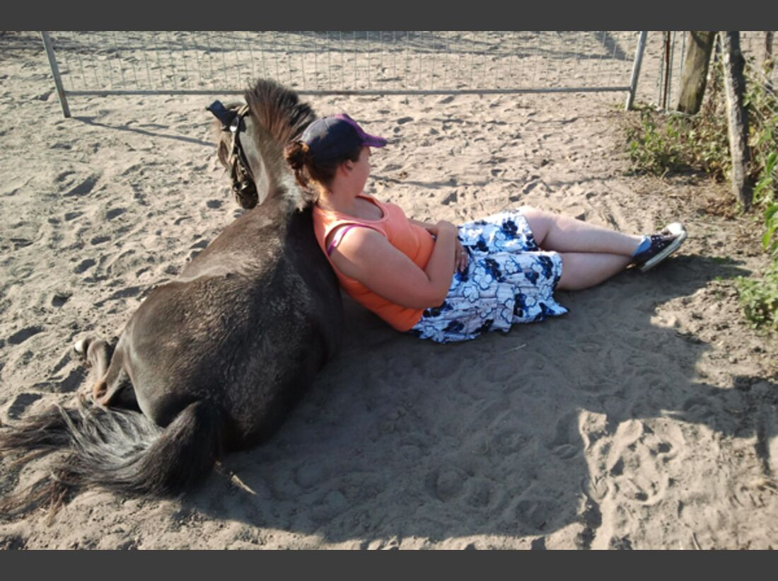 CAV Pony Leserfotos 25