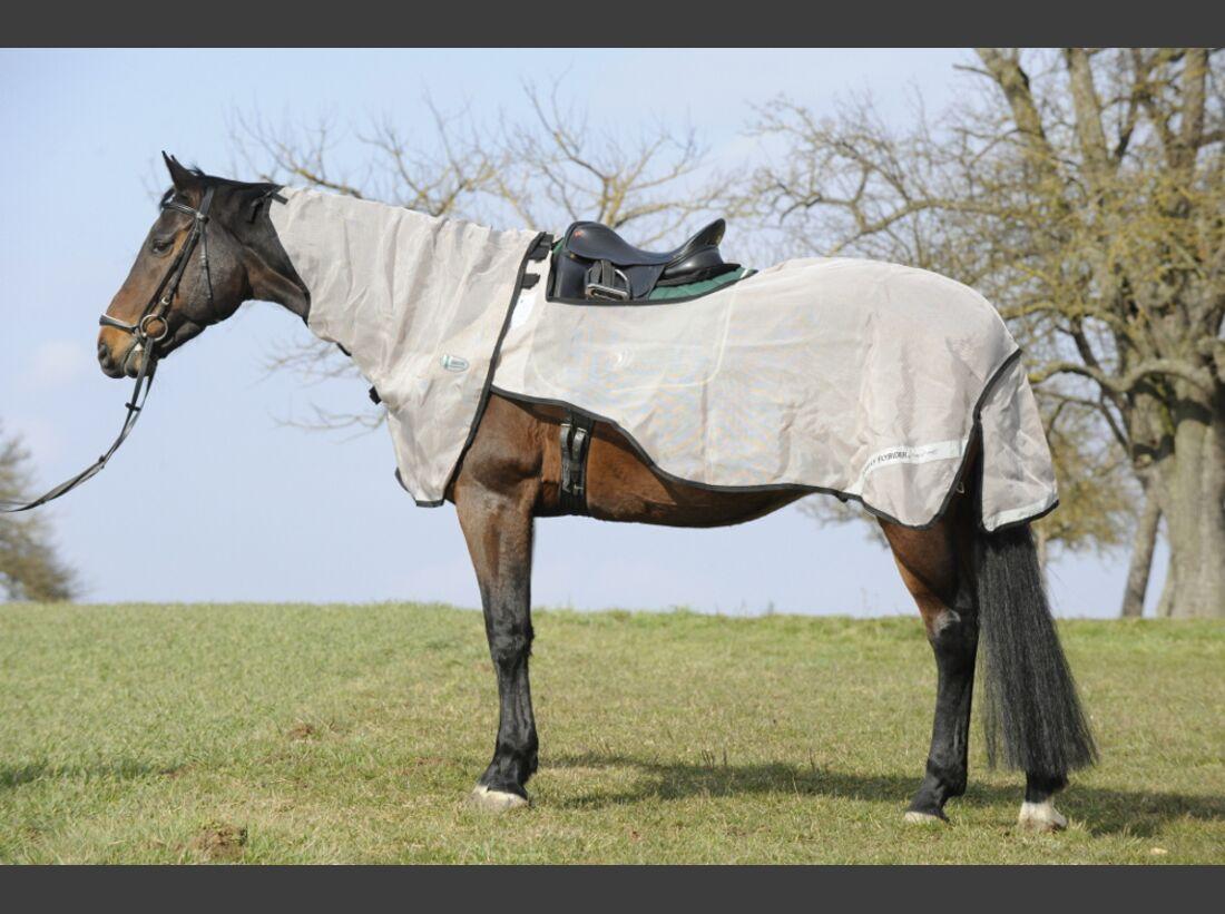 CAV Test Fliegendecken Horseware 1 (jpg)