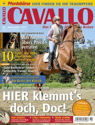 CAV Titel November 2011