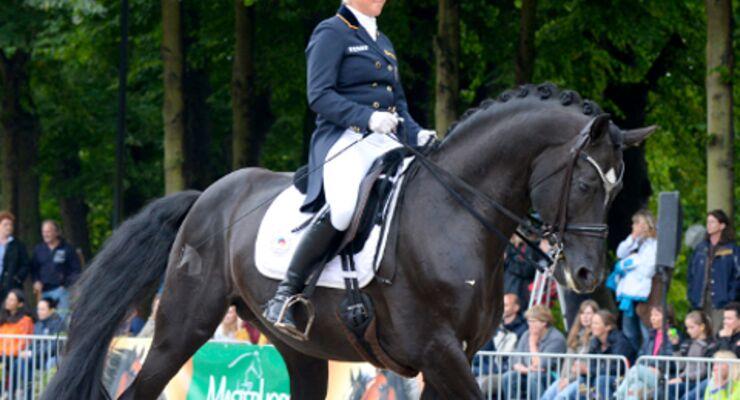 CAVALLO Academy 2014 - Faire Pferde-Profis Video