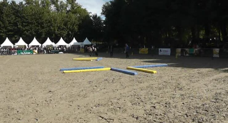 CAVALLO Academy – Corinna Lehmann BR Video