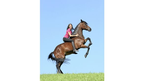 cav-pferde-fotografieren-2-lir2403 (jpg)