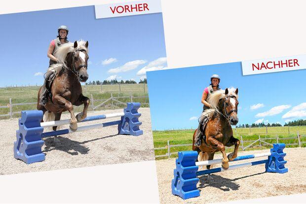 cav-pferde-fotografieren-3-lir4121-1 (jpg)