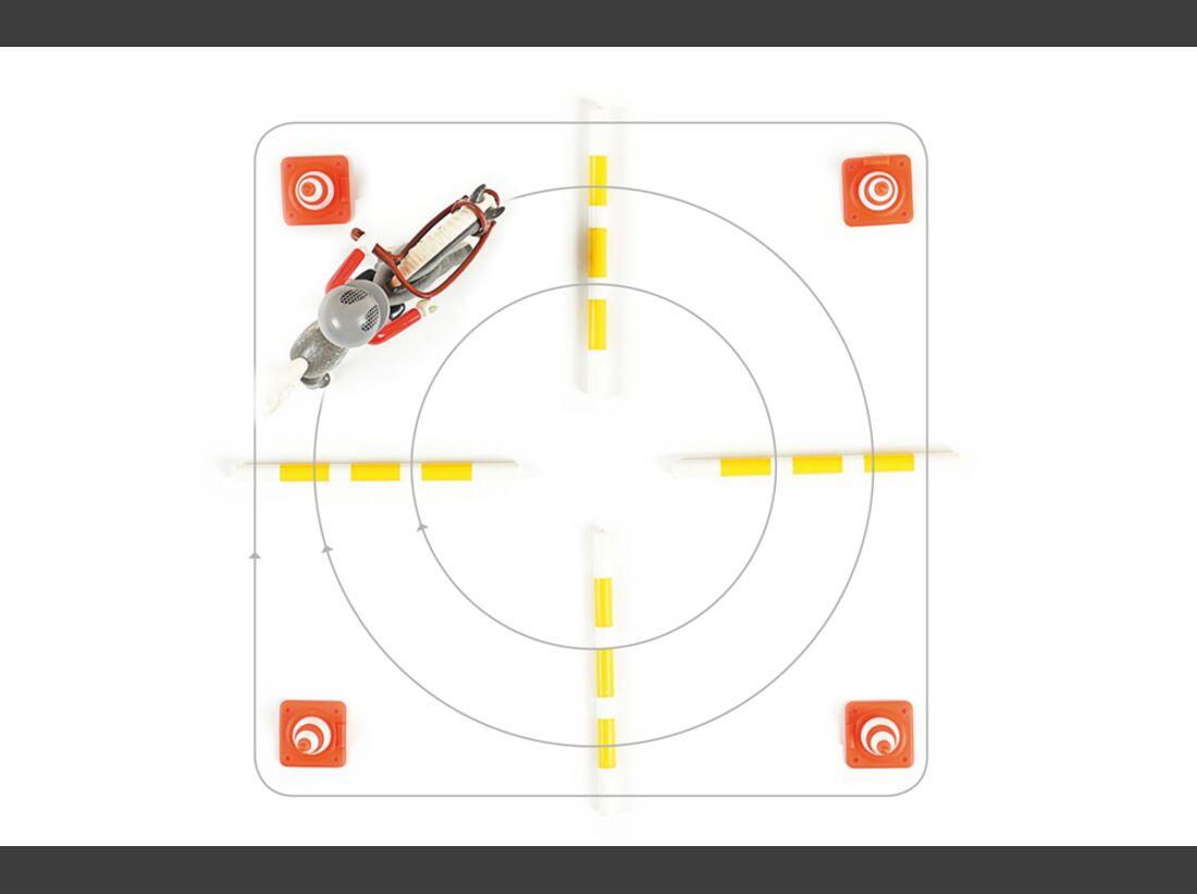 cav-stangen-pylonen-012017-das-clevere-kreuz-lir9678 (jpg)